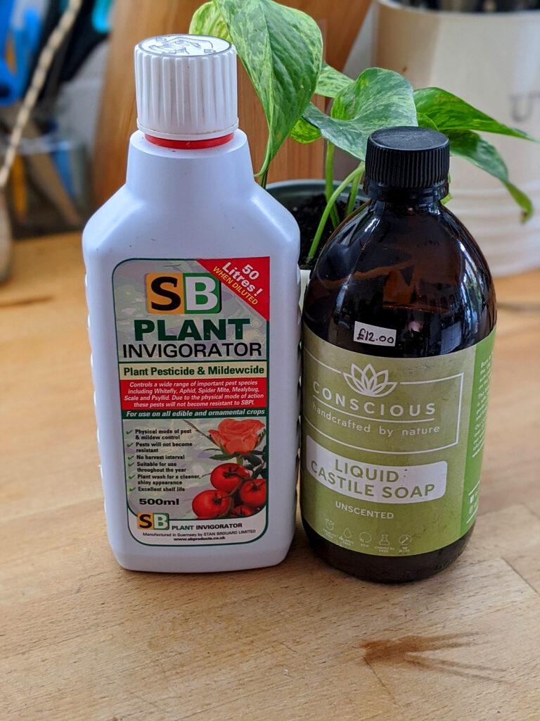 Different pest treatment options